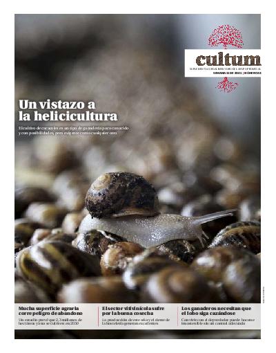 Cultum 22